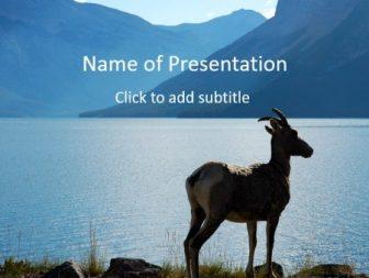 Elk Free PowerPoint Template