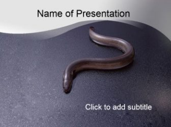Snake Free PowerPoint Template