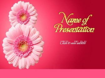 Women's Day, March 8 Free PowerPoint Template