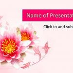 Lotus on a pink background