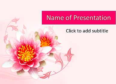 Lotus on a pink background Free PowerPoint Template