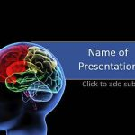 Neurology and brain