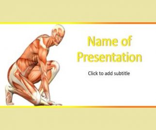 Muscular System Free PowerPoint Template
